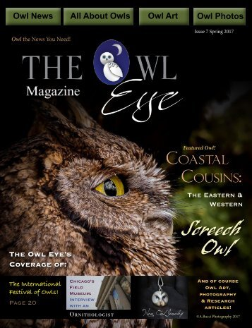 Owl Eye Issue 7_int