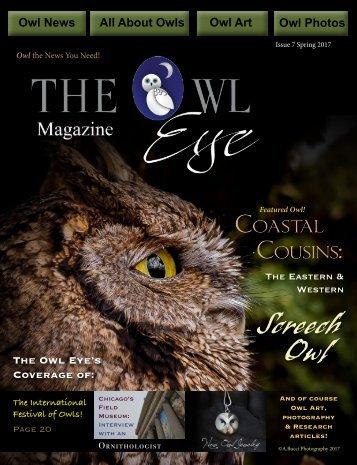 Owl Eye Issue 7_int
