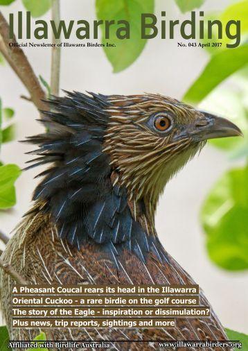 Illawarrra Birding 2017-04