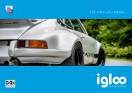 Igloo Automotive Brochure singles