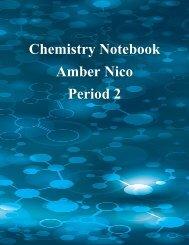 Chemistry Notebook Nico