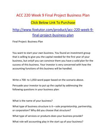 ACC 220 Week 9 Final Project Business Plan