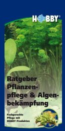 Ratgeber Pflanzen- pflege & Algen - Dohse Aquaristik KG