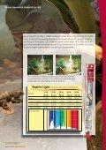 Guide illumination in the terrarium - Dohse Aquaristik KG - Page 4