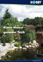 Klares Wasser – gesunder Teich - Dohse Aquaristik KG