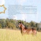 Catálogo Marcha News - IX Morada Nova - Page 3