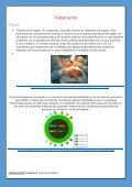 REVISTA.DOX - Page 6