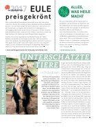 Liebefeld-Magazin 05.2017 - Page 6
