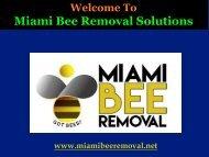 Bees Hive Removal Miami|Miami Bee Removal Corp