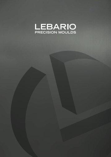 Lebario (Izurza, Spain)