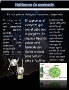 Guevra Garcia (1) - Page 6