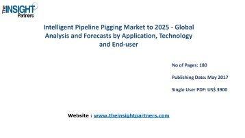 Intelligent Pipeline Pigging Market to 2025