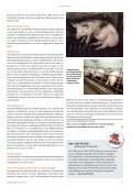 stadtMAGAZIN köln-süd | Ausg.  Juni-Juli 2017 - Page 5