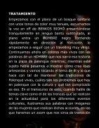 DOSSIER-YO QUIERO SER LIBRE - Page 6