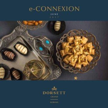 DGS_June e-Connexion 2017