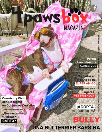 4PawsBox Magazine