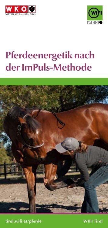 Pferdeenergetik