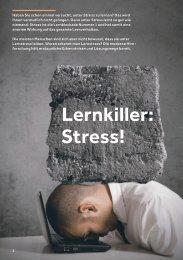 Lernkiller Stress