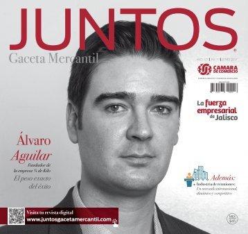 Juntos Gaceta Mercantil - JUNIO 2017