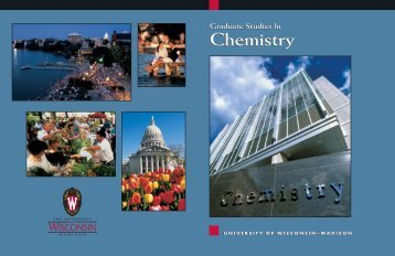 Chem viewbk 2k3 - Department of Chemistry - University of ...