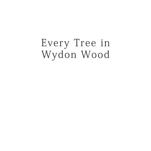 every tree in wydon wood 2