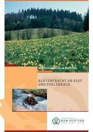 PDF (925 KB) - NRW-Stiftung