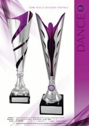 2017 Some Really Different Dance Trophies