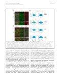 et al - BioMed Central - Page 4