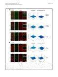 et al - BioMed Central - Page 6