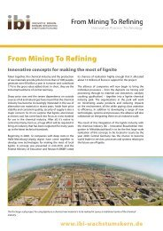 From Mining To Refining - ibi