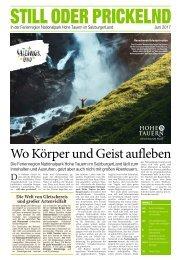 Salzburger Sommer 2017-06-08