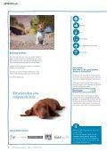 Reisen mit dem Hund - Page 2