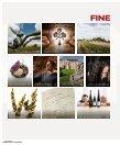 FINE Das Weinmagazin 02/2017 - Seite 6