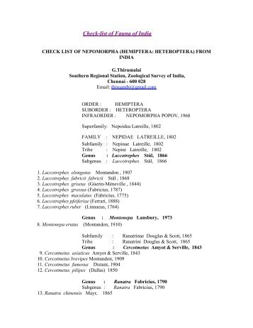 a Checklistlist of Gerromorpha of India - Zoological Survey of India