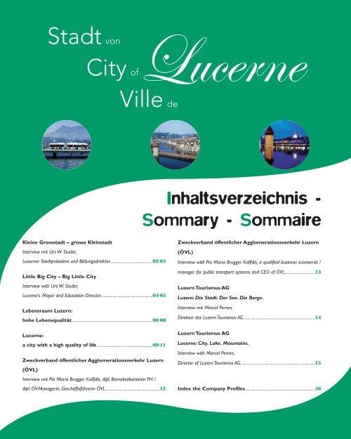 Lucerne - Com Consulting SA