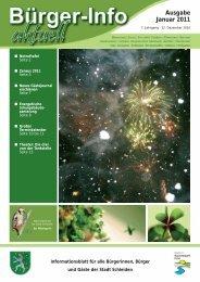 Ausgabe Januar 2011 - Stadt Schleiden