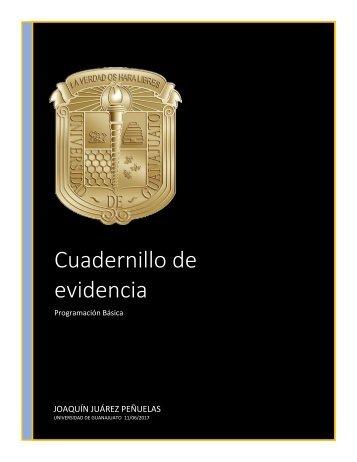 Cuaderno de evidencias