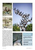 la_Toscana_giugno_2017 (4) (1) - Page 7