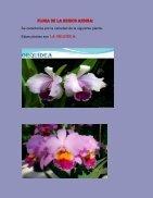 ESPECIES ENDEMICAS - Page 3