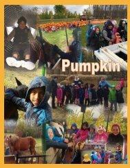 46 - Pumpkin patch