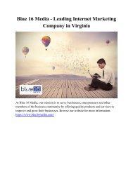 Blue 16 Media - Leading Internet Marketing Company in Virginia
