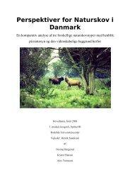 Perspektiver for Naturskov i Danmark.pdf