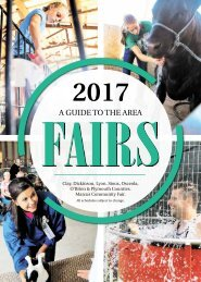 2017 Fairbook