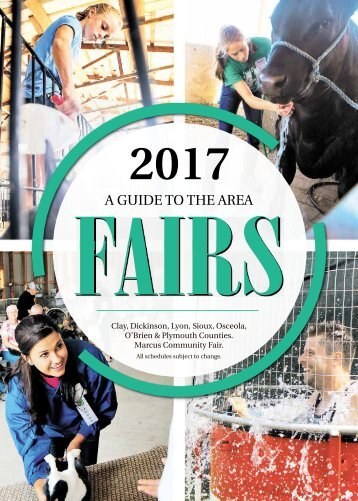 2017 Fairbook