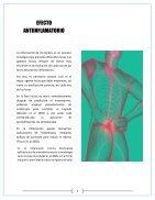 revista-micro - Page 6