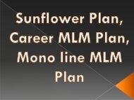 Binary Plan, Repurchase Income Plan, Daily Income Plan