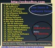 Website Designing-Web Development-MLM Software-HR Payroll Software