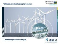 Invest in MV, Hr. Sturm - Wind Energy Network