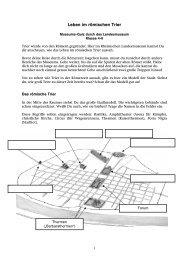 Museums-Quiz bis Kl. 6 [pdf] - Rheinisches Landesmuseum Trier