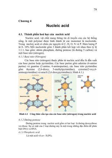 nucle acid